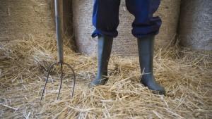 Deutsche Bauern haben keine Angst vor Putin