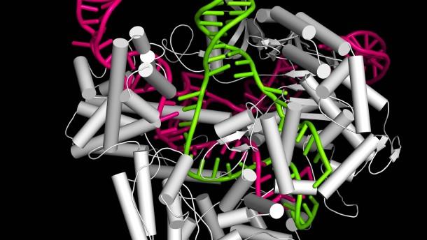 2020, oder ein Jahr im Zeichen der RNA