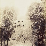 Unbekannter Fotograf, Hügelabhang in Frankreich, 1860-1880, Albuminabzug