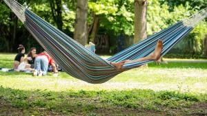 Der Sommer kehrt zurück – zumindest für einen Tag