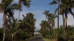 Île Vanille