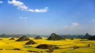Chinesische Rapsträume in der Provinz Luoping: In den landschaftlichen Konsequenzen gleichen sich Kommunismus und Kapitalismus.