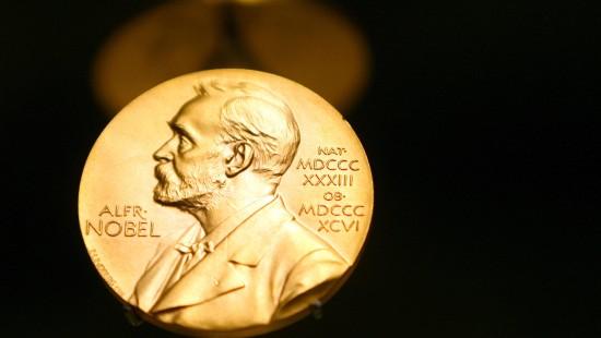 Medizin-Nobelpreis für den Navi im Kopf