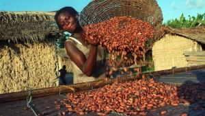 """""""Der Kakao-Anbau ist keine heile Welt"""""""
