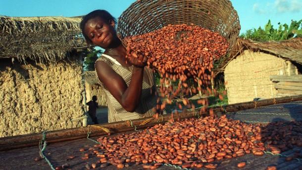 nachhaltigkeit als imagefaktor der kakao anbau ist keine heile welt unternehmen faz. Black Bedroom Furniture Sets. Home Design Ideas