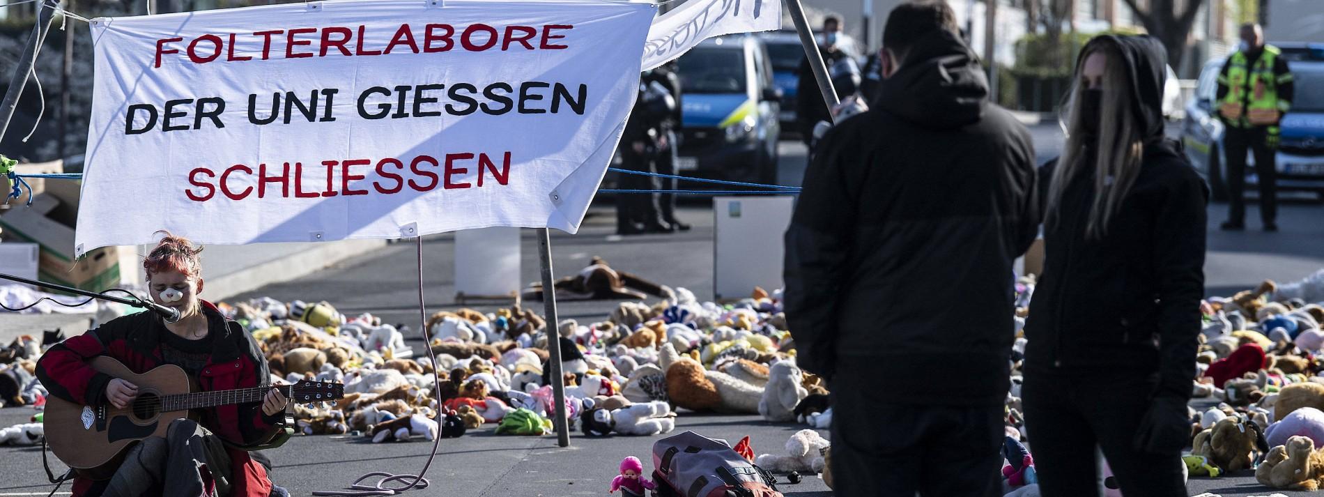 Kuscheltiere protestieren gegen Tierversuche