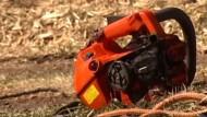 Baumpfleger überlebt spektakulären Arbeitsunfall