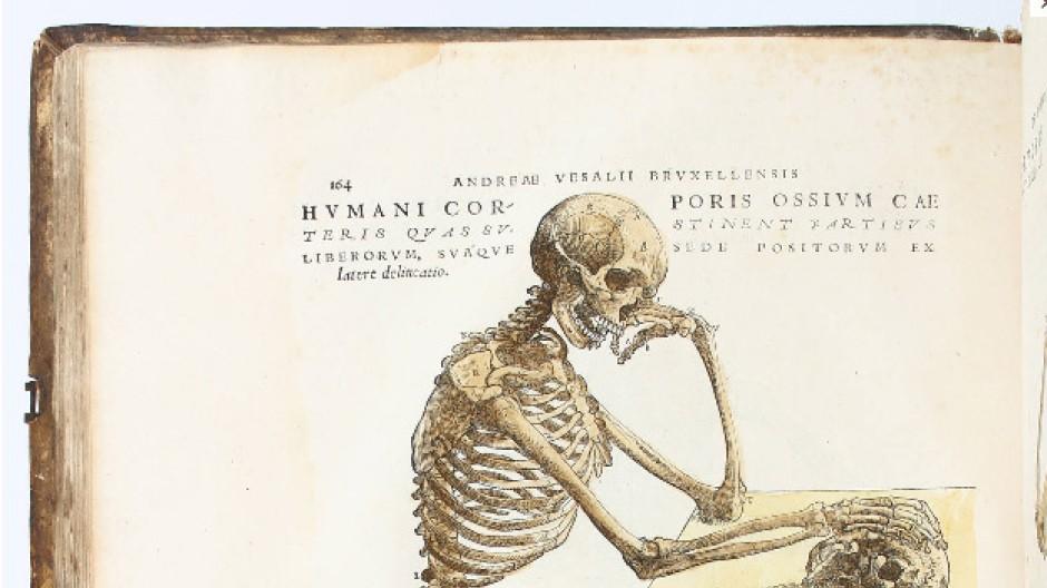 "Glanzstück der frühen Anatomie: Vesalius, ""De humani corporis fabrica libri septem"", Basel, J. Oporinus, 1543, 41 mal 29 Zentimeter, Taxe 700.000 Euro."