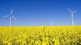 Wie die grüne Wirtschaft finanziert werden könnte