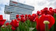 Tulpen stehen vor dem Bosch-Forschungscampus in Renningen in Baden-Württemberg. In Forschung und Entwicklung steckt das Unternehmen 9,3 Prozent seines Umsatzes.