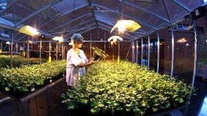 Für Anleger bleibt die Biotechnologie ein Risiko