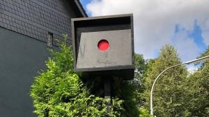 Tischler wegen Blitzer-Attrappe vor Gericht