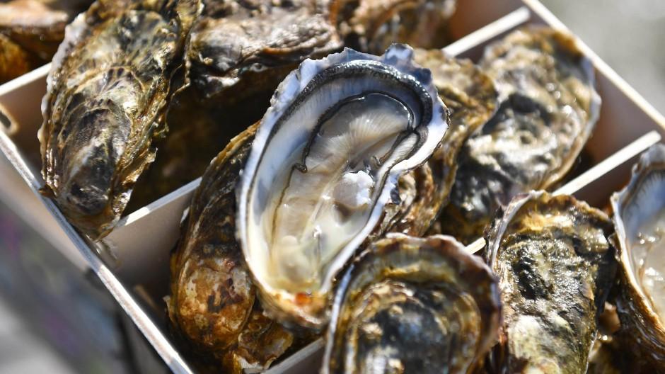 Nicht nur zum Essen geeignet: Austern produzieren mit Perlmutt schimmernde Schmuckstücke.