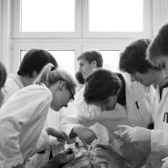 Objekt des Reformeifers: Medizinstudenten bei der Leichenpräparation