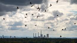 Weltweit viel weniger neue Kohlekraftwerke in Planung