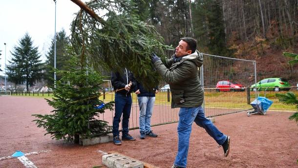 Wenn der Weihnachtsbaum zum Speer wird
