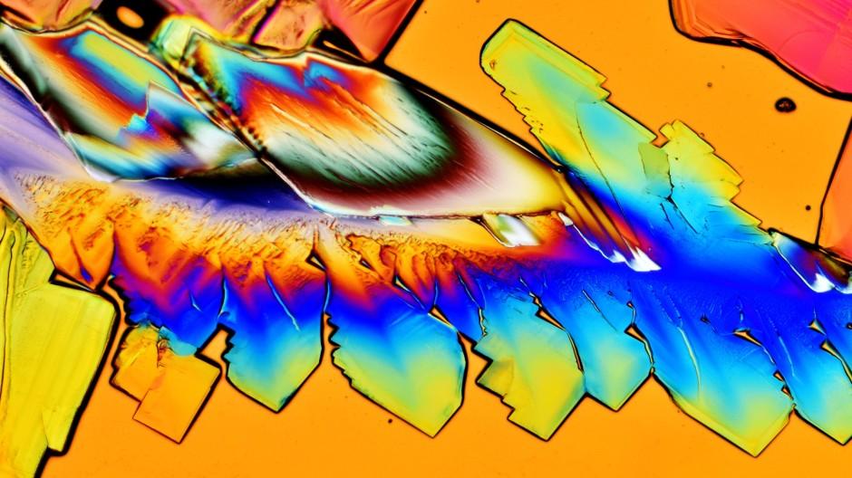 Zuckerkristalle im polarisierten Licht unter dem Mikroskop. Wie  der Zucker an RNAs dockt, ist  noch rätselhaft.