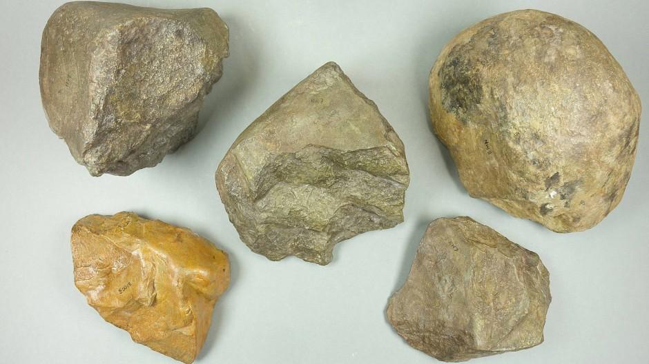 Einige der Funde aus Kenia sind als Abbild im Museum zu sehen.