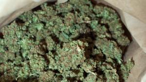 Marihuana-Lounge in Denver eröffnet