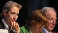 Mit ihnen will die AfD den Einzug in den Bundestag schaffen: Alice Weidel (vorne links) und Alexander Gauland - beide Mitglieder im Bundesvorstand der Partei