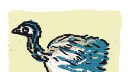Komische Vögel an  der Mosel
