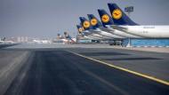 Bedrohte Art: Die Fluglinie mit dem Kranich muss sich schnell etwas einfallen lassen, wenn sie im Wettbewerb bestehen will