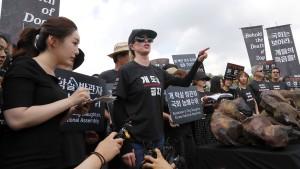 Kulturkampf um Hundefleisch in Südkorea