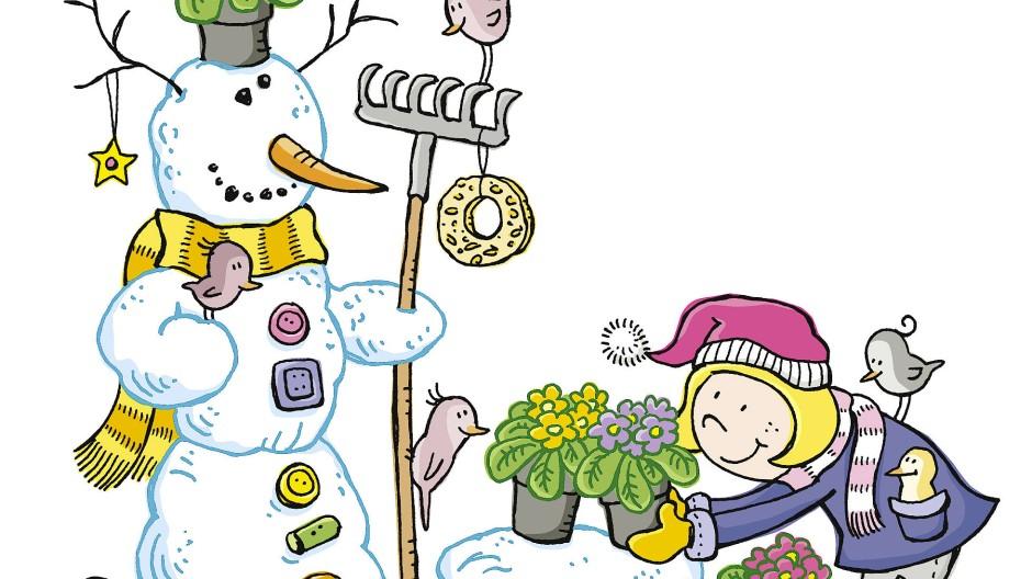 Primel sind weder fürs Wohnzimmer geeignet noch für den Schnee: Die handelsüblichen Hybriden der Polsterprimeln vertragen Frost nicht besonders gut.