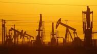 In der neuen Ölwelt