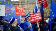 Brexit-Gegner protestieren am Dienstag vor dem britischen Parlament.