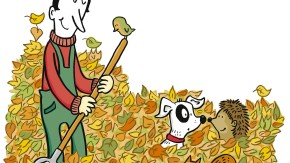 Alles im grünen Bereich: Eine Winterkur für den Acker