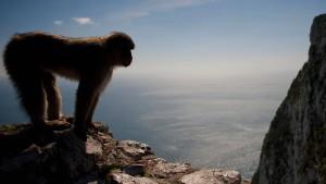 Warum Gibraltar Angst vor dem Brexit hat