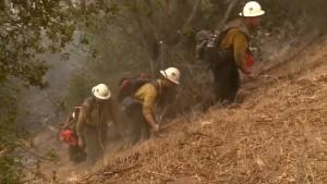 Tausend Hektar Land zerstört