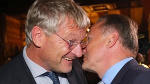 Meuthen sieht AfD 2017 im Bundestag