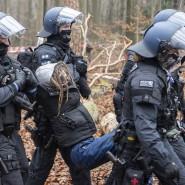 Zugriff: Polizisten tragen eine Aktivistin im November aus dem Dannenröder Forst. Eine Ausbaugegnerin ist nach einem Verfall im Herrenwald nun in U-Haft genommen worden