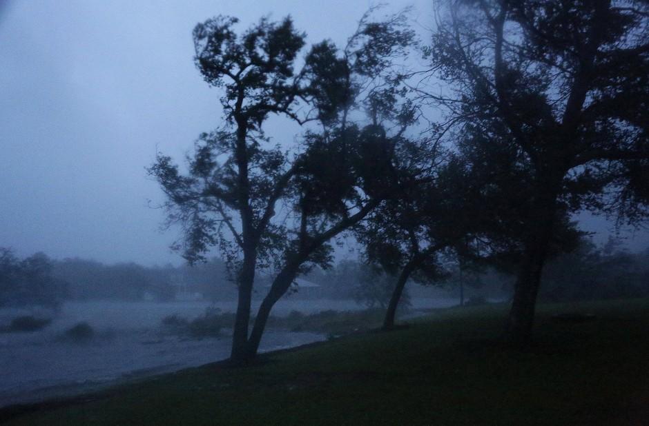 Zitternde Bäume in Swansboro, North Carolina