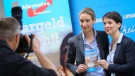 Alice Weidel und Frauke Petry im Februar auf einer Pressekonferenz in Rheinland-Pfalz