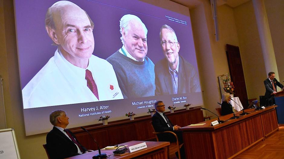 Die drei Preisträger Harvey J. Alter, Michael Houghton und Charles M. Rice auf einer Leinwand bei der Verkündigung der Preisträger in Oslo