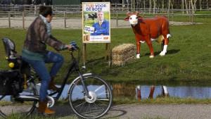 Wilders oder weiter wie bisher?