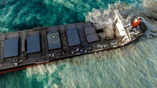 Meereslebewesen, Tourismus und Bewohner in Gefahr