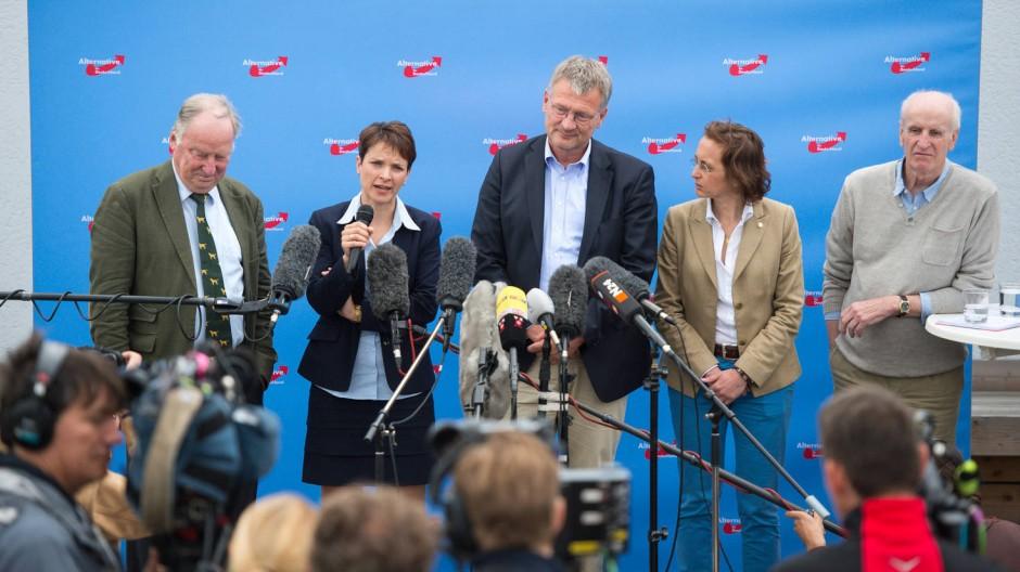 """AfD-Chef Jörg Meuthen (in der Mitte) hält die Angriffe für """"blanken Unsinn""""."""