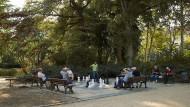 Königliches Spiel: Im Bethmannpark treten Ältere und Jüngere aus allen Millieus gegeneinander an.