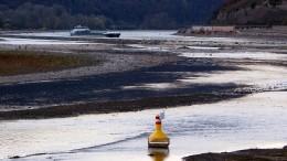 Keine neuen Wehre und Schleusen am Rhein