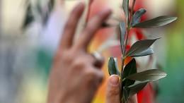 100 Kurden protestieren gegen Angriffe in Syrien