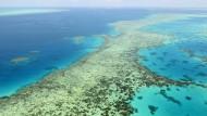 Sehr schlechte Aussichten: das Great Barrier Reef in Australien 2017