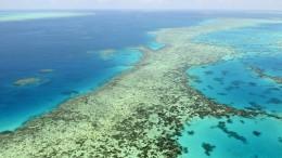 Australien kündigt Widerstand gegen Herabstufung des Great Barrier Reef an