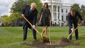 Gemeinsam eine Eiche pflanzen
