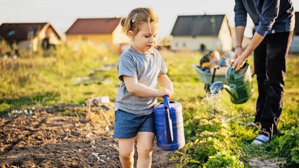 Umwelt retten für Anfänger