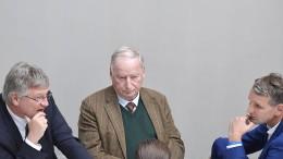 Die deutschtümelnde Wirtschaftspolitik der AfD