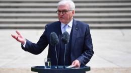 """Steinmeier warnt vor """"politischen Randalinskis"""""""
